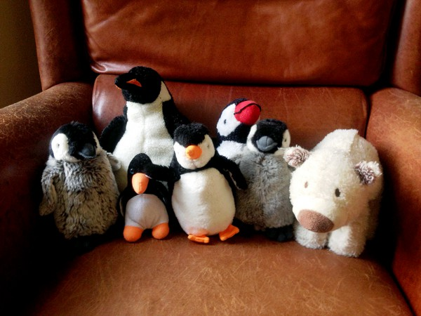 Stuffed animals for the exposition of my children's book illustrations
